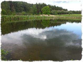 agroturystyka nad jeziorem stawem