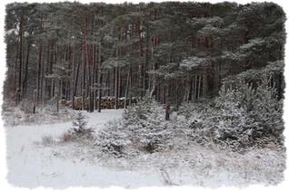 wczasy agroturystyczne zimą