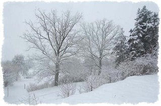 agroturystyka zimą przyroda