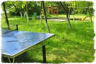 Tenis stołowy dla dzieci i dorosłych