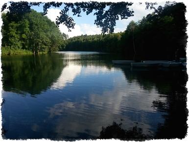 Jezioro/Staw Goszczanowski atrakcja